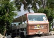 Mixon-Fruit-Farms-Orange-Blossom-tram-offers-daily-tours-Bradenton-FL
